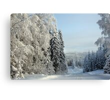 Snow Road Canvas Print