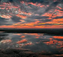 Fire in the Sky by Mieke Boynton