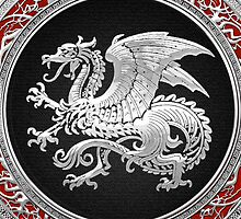 Icelandic Dragon (Silver) by Captain7