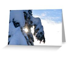 Sun Kisses Greeting Card