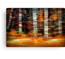 Time Flies Through Forests Changing Canvas Print