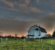 A Farmer's Paradise by Carrie Blackwood