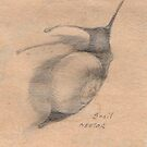 The usual Suspects - rough snail 1 by Nestor