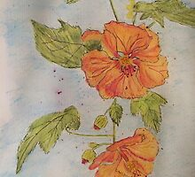 Orange Abutilon by Wendy Sinclair