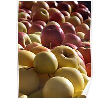 Colorful Apples, Greenmarket, New York Botanical Garden, Bronx, New York Poster