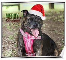 Christmas Staffy Poster
