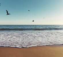 Pelicans Flying Over Ocean by visualspectrum