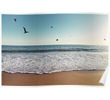 Pelicans Flying Over Ocean Poster