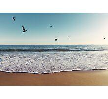 Pelicans Flying Over Ocean Photographic Print