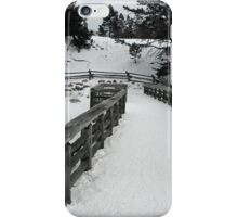 It's Time to Bridge iPhone Case/Skin
