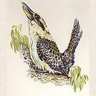 Kookaburra by Carol McLean-Carr
