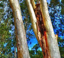 Trees 3 by Skyangel
