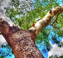 Trees 6 by Skyangel