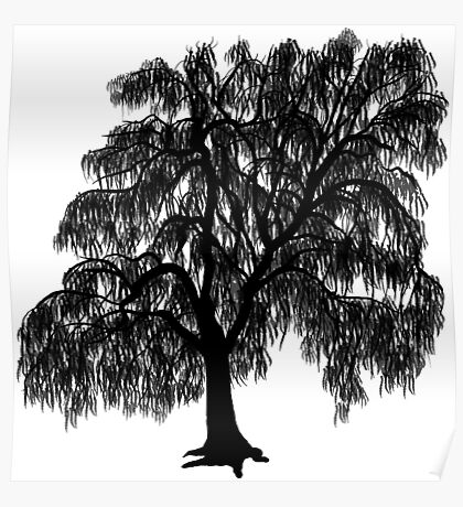 Willow Tree Poster