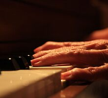 Grandma's Hands by Elizabeth Jolly