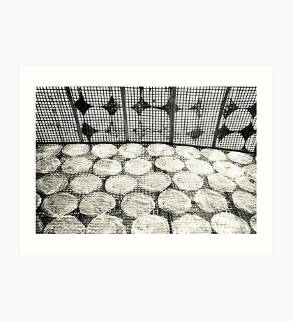 Rice Paper Art Print