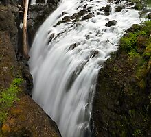 Englishman River Falls Vertical by Michael Russell