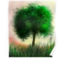 Peaceful Tree Poster
