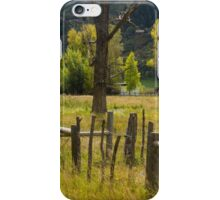 Fence Posts iPhone Case/Skin