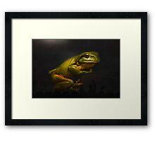 Super frog 002 Framed Print