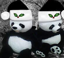 。◕‿◕。 PANDAS SPREADING CHEER AND JOY 。◕‿◕。  by ╰⊰✿ℒᵒᶹᵉ Bonita✿⊱╮ Lalonde✿⊱╮