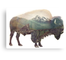 Bison and Independence Mine Canvas Print