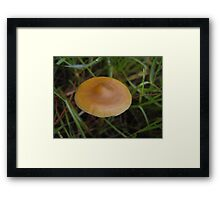 Spores from space, UFO Framed Print