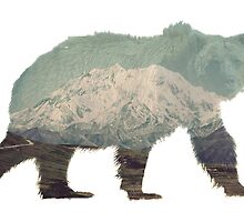 Denali Bear by caronjess