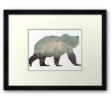 Denali Bear Framed Print