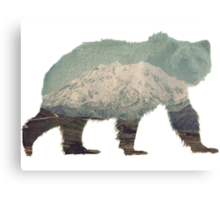 Denali Bear Canvas Print