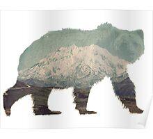 Denali Bear Poster