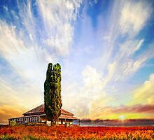 The Queenslander by Fotomaiden