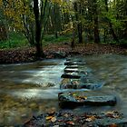 Stepping Stones by Simon Pattinson