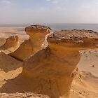 Desert Scenery in Egypt by Michael Brewer