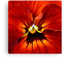 Surrounded by Orange Canvas Print