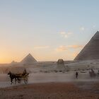 Giza Plateau by Michael Brewer