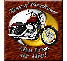 Harley Davidson Sportster King Of The Road Photographic Print