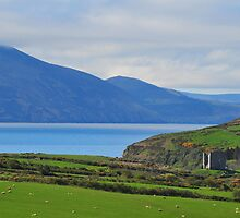 Overlooking Dingle Bay by JurassicJohn