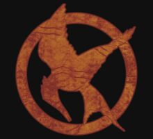 Hunger Games Mockingjay by davewear