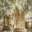Rest In Peace by Lea  Weikert