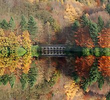 Autumn in Derwent by Nigel Hatton, Derwent Digital Imaging