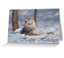 Arctic Wolf Holiday Card 3 Greeting Card