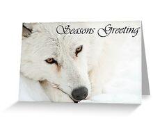 Arctic Wolf Seasons Card 4 Greeting Card