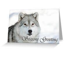 Arctic Wolf Seasons Card 5 Greeting Card