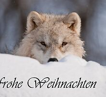 Arctic Wolf Christmas Card German 7 by WolvesOnly