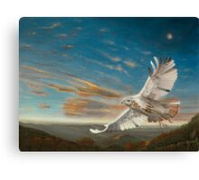 Cloudfeather's Dream Canvas Print
