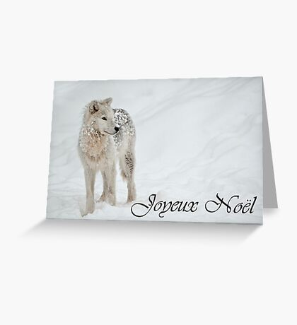 Arctic Wolf Christmas Card French 8 Greeting Card