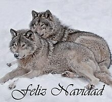 Timber Wolf Christmas Card Spanish 2 by WolvesOnly