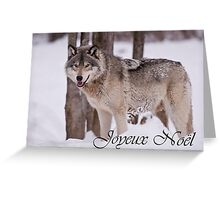 Timber Wolf Christmas Card French 3 Greeting Card