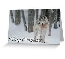 Timber Wolf Christmas Card English 4 Greeting Card